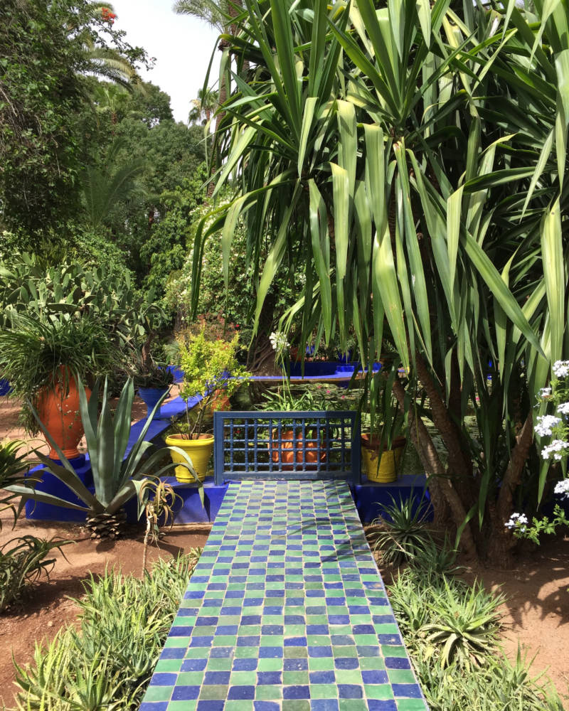 The history of jardin majorelle the marrakech garden that for Jardin ysl marrakech